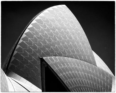 Sydney Opera House Detail Number 1 - p1154m1462834 by Tom Hogan