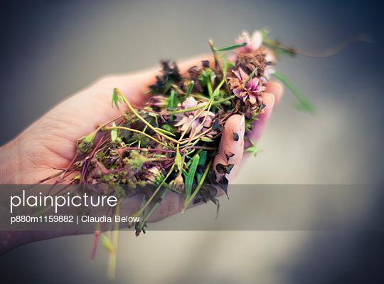 Gartenarbeit - p880m1159882 von Claudia Below