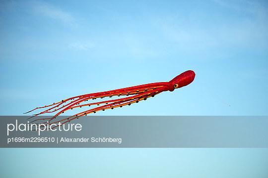 Octopus kite - p1696m2296510 by Alexander Schönberg