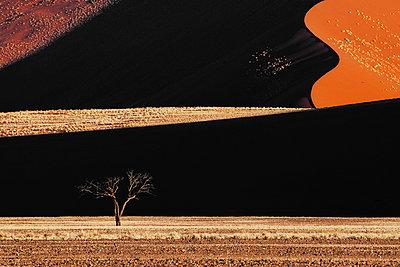 Namib - p1065m885973 von KNSY Bande