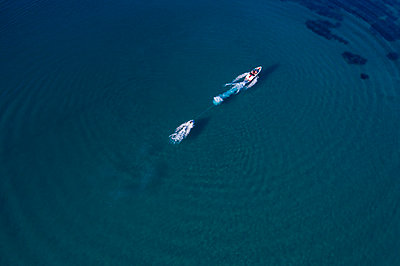 Water skiing - p1437m2107344 by Achim Bunz