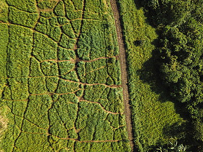 Indonesia, Bali, Ubud, Aerial view of path at hills - p300m2042719 von Konstantin Trubavin