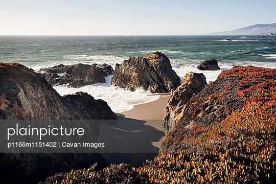 p1166m1151402 von Cavan Images
