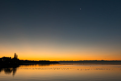 Germany, Hagnau, Moon over Lake Constance and silhouette of the Alps - p300m1121181 by Holger Spiering