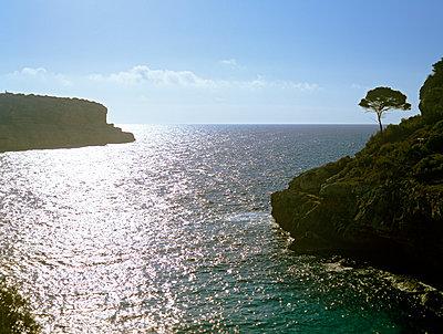 Küste Mallorca - p885m1087465 von Oliver Brenneisen