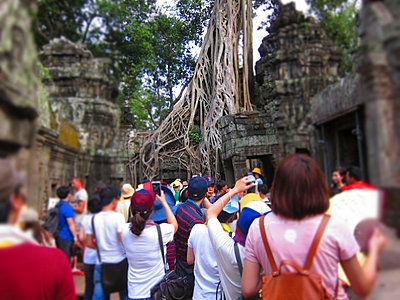 Large group of tourists visiting famous ancient tree of Ta Prohm temple, Angkor, Siem Reap, Cambodia, Southeast Asia - p934m893246 by Arno Baude photography