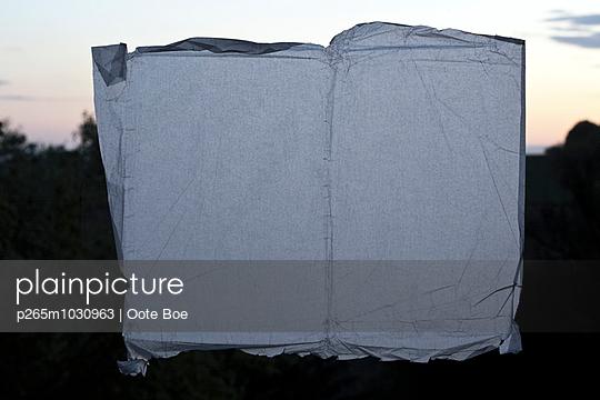 Blatt Papier im Abendlicht - p265m1030963 von Oote Boe