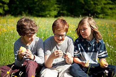 Drei Freunde machen Pause im Park - p1195m1138104 von Kathrin Brunnhofer