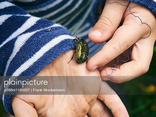 Ein Käfer auf Kinderhand - p358m1160207 von Frank Muckenheim
