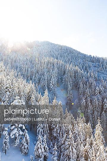 Winterwonderland - p454m2099663 by Lubitz + Dorner
