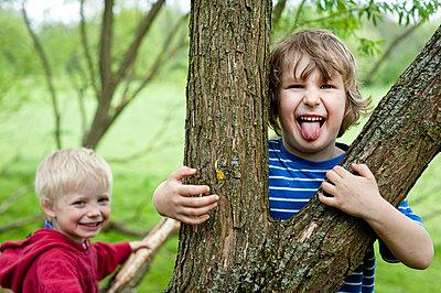Junge schaut hinter Baum hervor - p7670054 von vonwegener.de