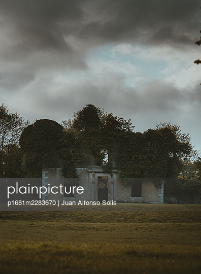 House ruin overgrown by trees - p1681m2283670 by Juan Alfonso Solis