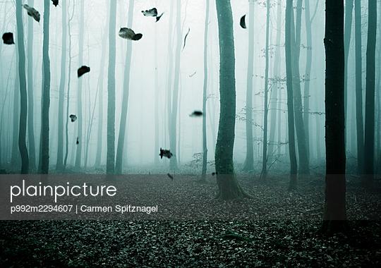 p992m2294607 by Carmen Spitznagel