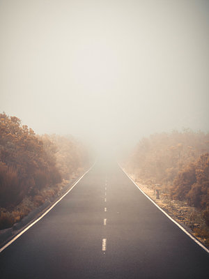 Rural road in the fog - p1549m2245188 by Sam Green