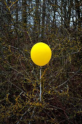 yellow balloon - p876m1573446 by ganguin