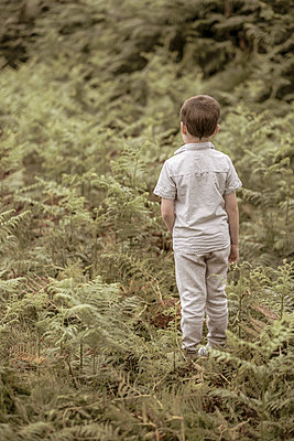Boy in amongst a field of fern - p1228m2116340 by Benjamin Harte