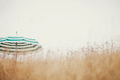 Sweden, Sodermanland, Dry grass, umbrella in background - p352m1349130 by Fredrik Ottosson