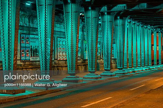 p300m1166988 von Walter G. Allgöwer
