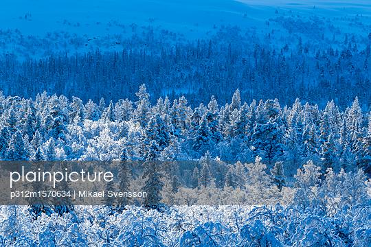 p312m1570634 von Mikael Svensson
