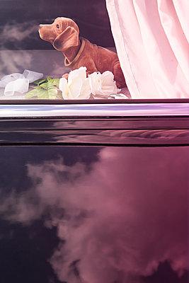 Wackeldackel im Auto - p045m2005018 von Jasmin Sander