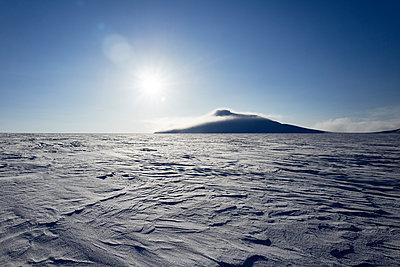 Snowy landscape in Svalbard Spitzbergen - p1203m1189802 by Bernd Schumacher