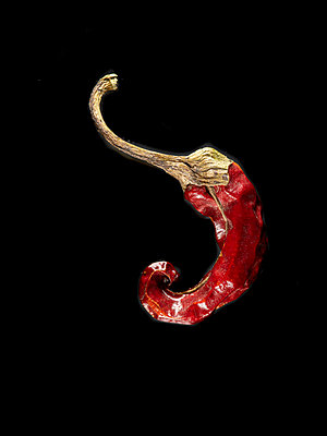 Dried chilli pepper - p401m2192524 by Frank Baquet