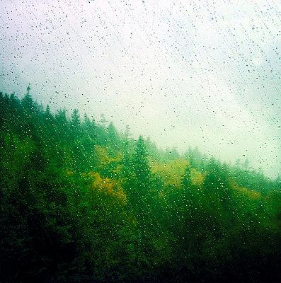 Rain on the window - p7560157 by Bénédicte Lassalle