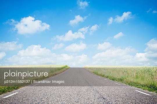 plainpicture - plainpicture p312m1552137 - Road vanishing into horizon - plainpicture/Johner/Scandinav Images