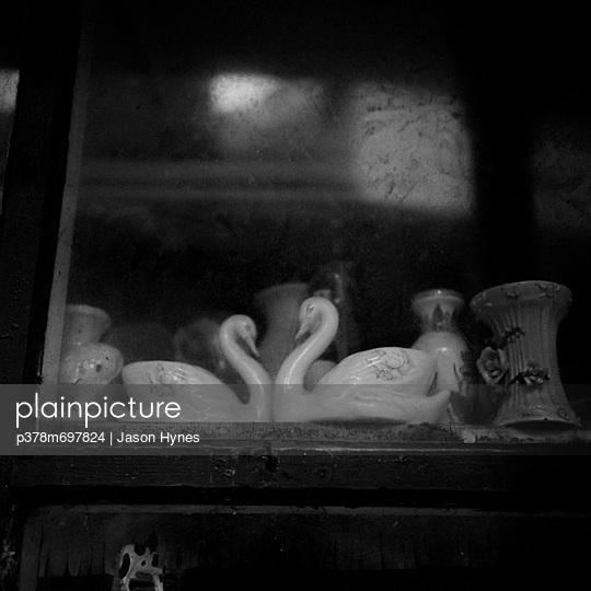 Swans in window - p378m697824 by Jason Hynes