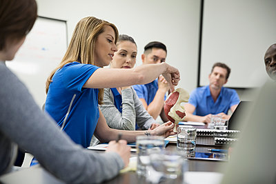Physiotherapists with model training in conference room meeting - p1192m1447335 by Hero Images