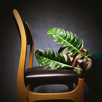 man with big leaves on face leaning on chair - p1521m2150061 by Charlotte Zobel