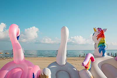 Three dinghies in the shape of an animal - p1623m2294546 by Donatella Loi