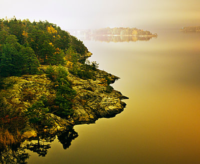 Sweden, Stockholm Archipelago, Sodermanland, Djuro, View of coastline of Baltic Sea - p352m1100804f by Lauri Rotko