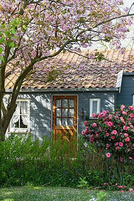 Auf dem Land - p949m929338 von Frauke Schumann
