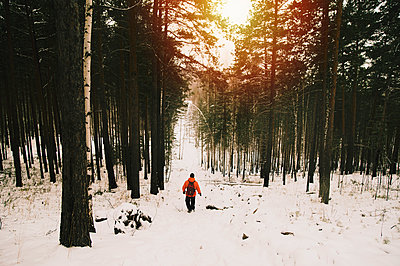 Hiker walking in snowy forest - p555m1312191 by Aleksander Rubtsov