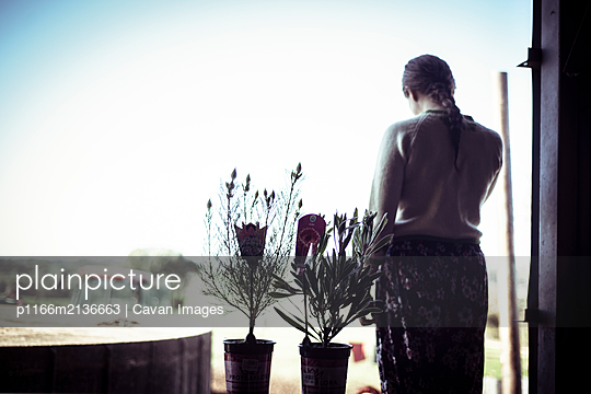 Young woman stands in window silhouette with flowers looking at farm - p1166m2136663 by Cavan Images