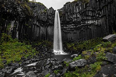 Svartifoss Iceland - p1512m2037934 von Katrin Frohns