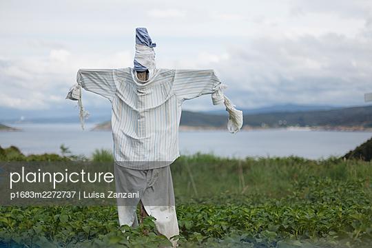 Scarecrow - p1683m2272737 by Luisa Zanzani