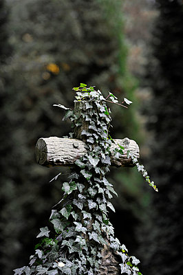 Crucifix - p949m902558 by Frauke Schumann