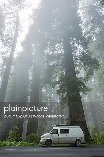 p343m1520913 von Woods Wheatcroft