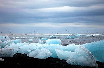 Eisschollen am Strand - p382m1074177 von Anna Matzen