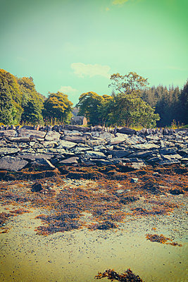 Beach rocks cottage coast seaweed picturesque - p609m1219830 by OSKARQ