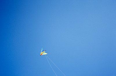 Drachen am Himmel - p2370242 von Thordis Rüggeberg