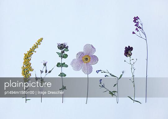 flowers for Zoëe - p1494m1589100 von Inkje Drescher