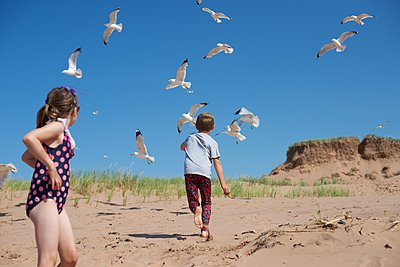 Boy and Girl on Beach Chasing Seagulls - p1169m1124079 by Tytia Habing