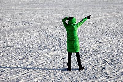 ICE - p1212m1109015 by harry + lidy