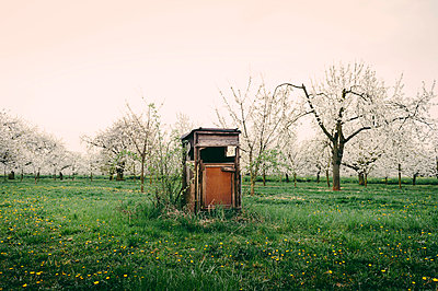 Rheingau - p1088m902294 by Martin Benner
