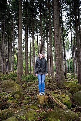 Between trees - p161m938774 by Kerstin Schomburg