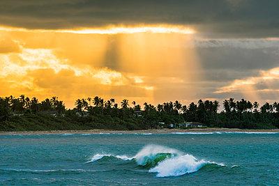 Playa Moron, Las Terrenas, Samana Peninsula, Dominican Republic. - p651m2006816 by Marco Bottigelli