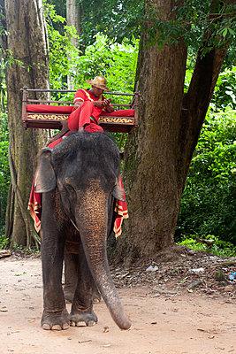Kambodscha  - p940m851834 von Bénédite Topuz